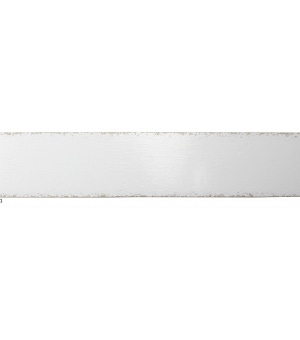 EV531-6011