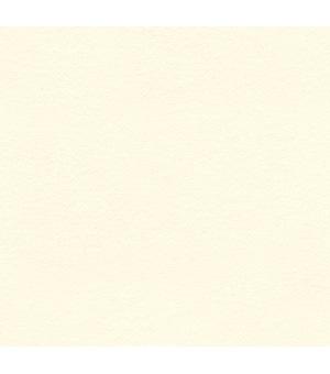 25703 Antique White
