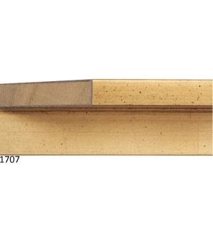 EVP1707