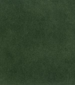 EW58905